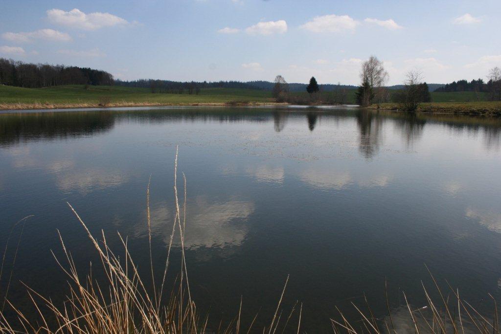 Grand étang de Corfaing